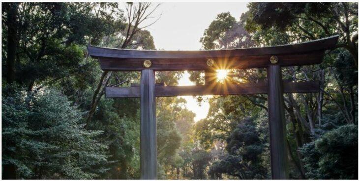 Enjoy the silence at Meiji Shrine
